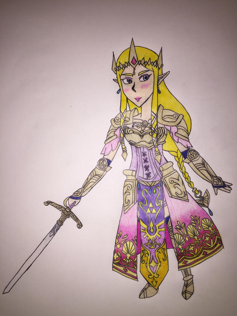 Hyrule Warriors Zelda by airbornewife71