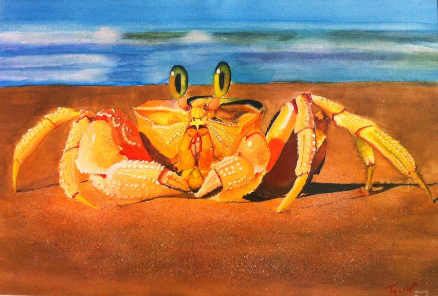 Fiddler on the Beach by Tabbytooner