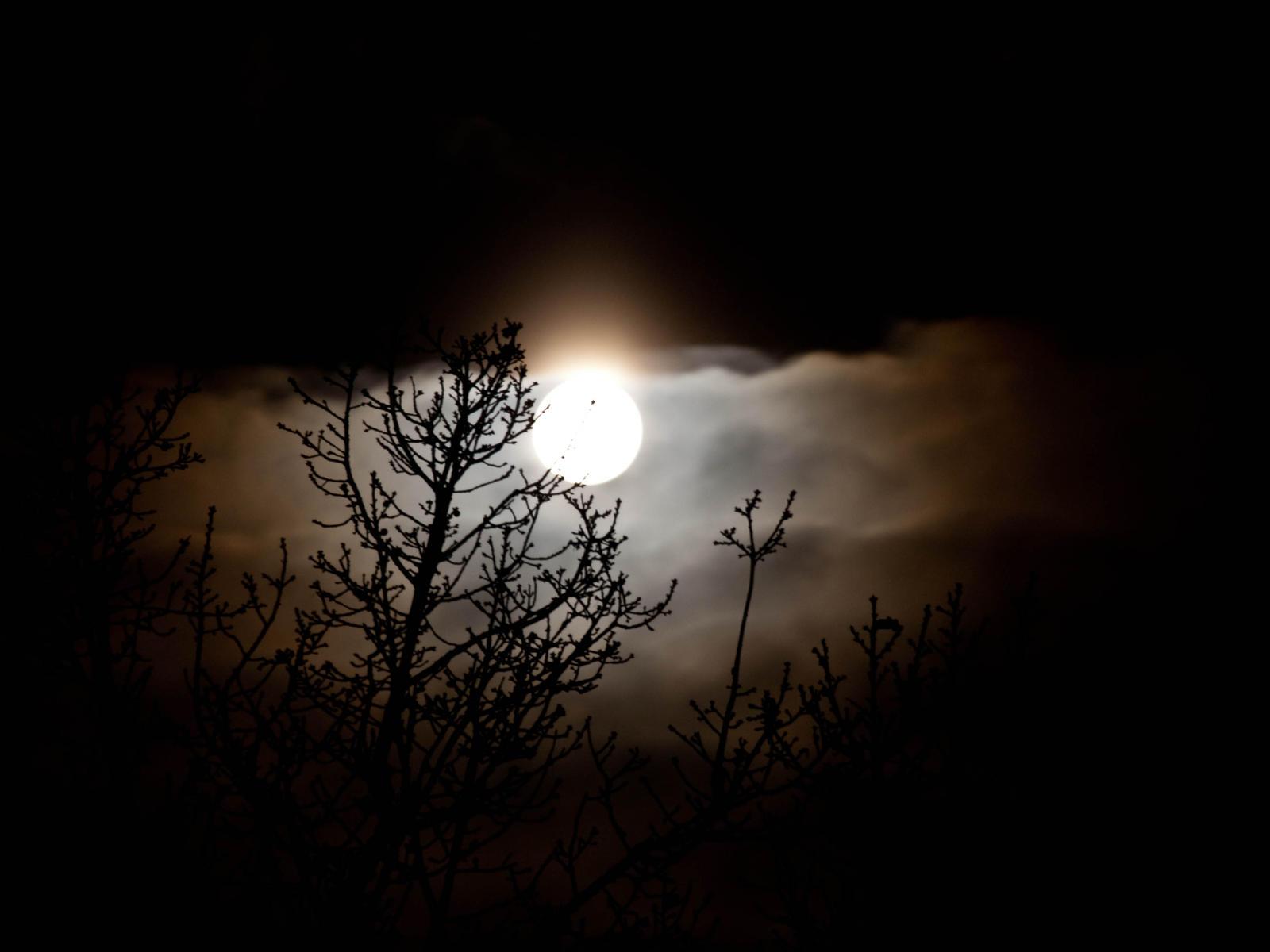 Mysterious Moon by sandrability