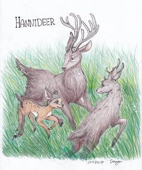 HanniDeer family