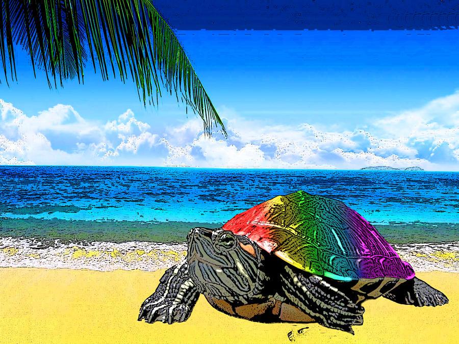 DeviantArt: More Like Rainbow turtle by IPPO-Lita