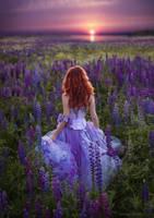follow the sun by chervona