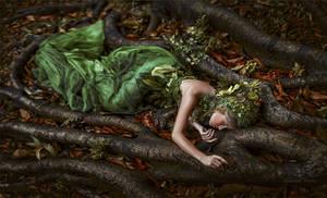 Fallen nature