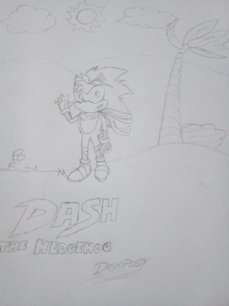 Dash The Hedgehog by DashSpeedy