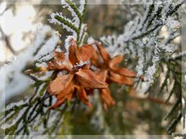 Winter's tale III by Magic-diamond