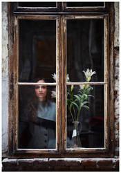 Window Widow.