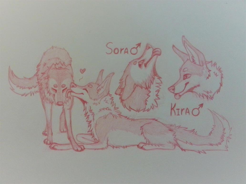 OC Sora and Kira by k0FFe