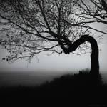 Distress by ulyce