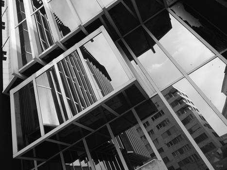 Transgas' reflection