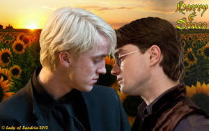 Harry Potter - Drarry 03