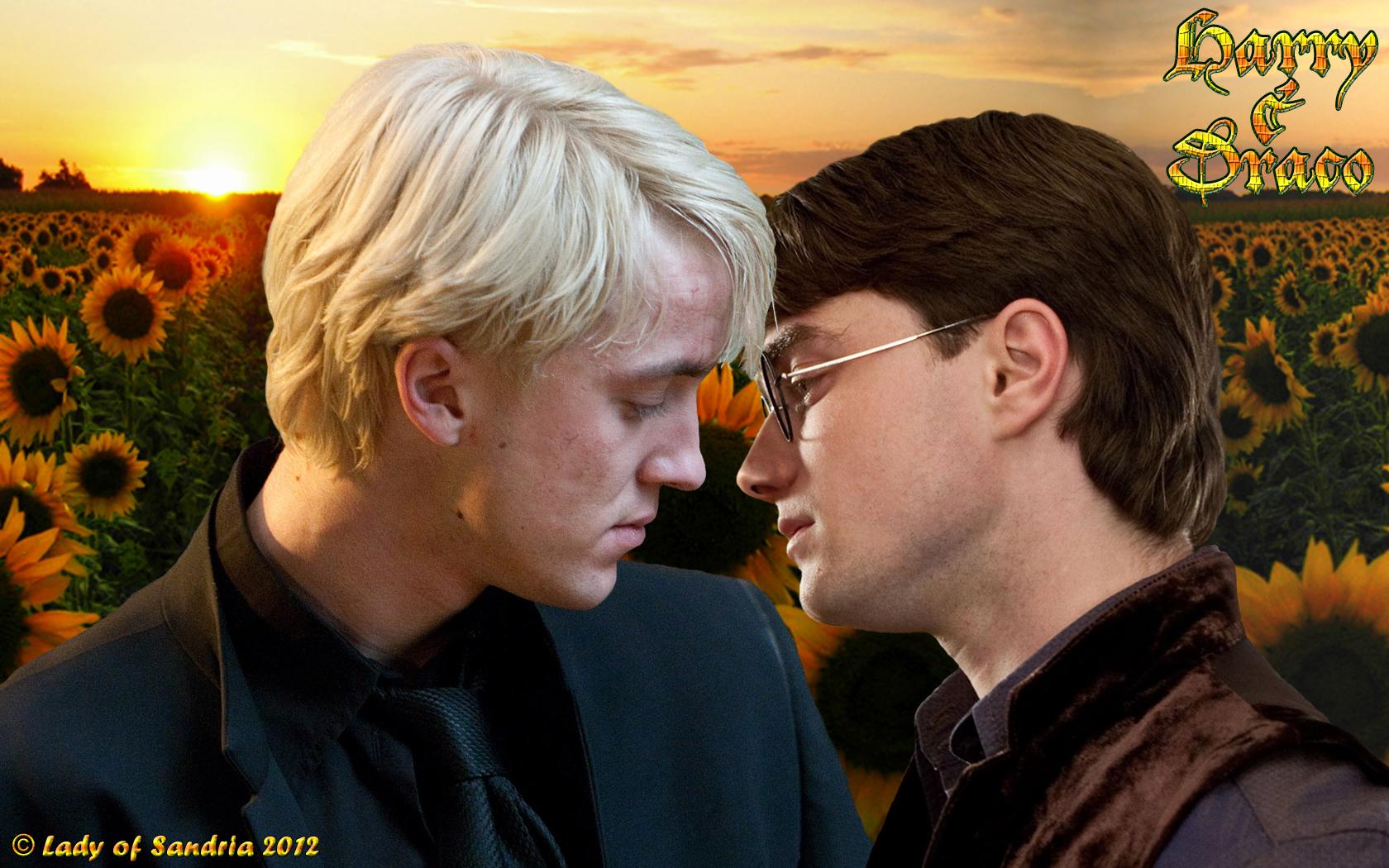 Harry Potter - Drarry 03