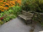 Autumn bench.
