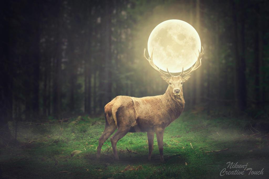 Deer of moon
