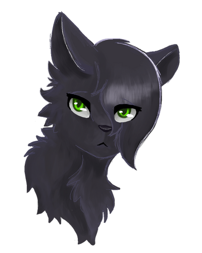 Apprentices Warrior Cats Untold Tales: BoulderClan ~ Kind And Strong