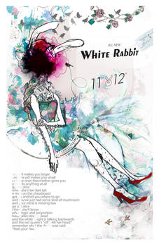 dear white rabbit