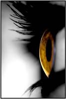 Looking ahead by photoImpact