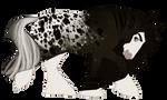 design for bearzoi by pony-bones