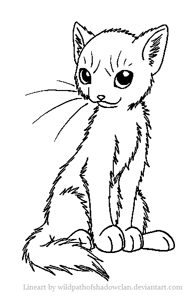 One Line Text Art Cat : Cat lineart