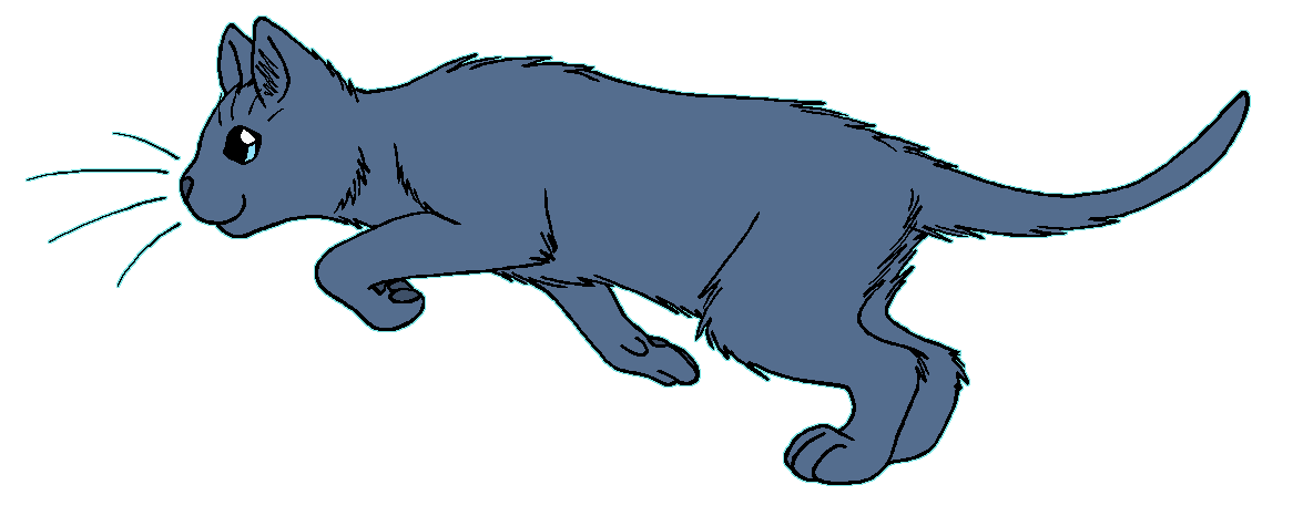 ThunderClan - Stormtail by WildpathOfShadowClan