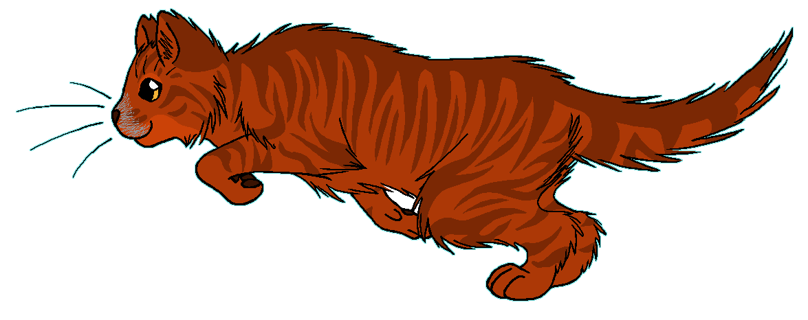 ThunderClan - Poppydawn by WildpathOfShadowClan