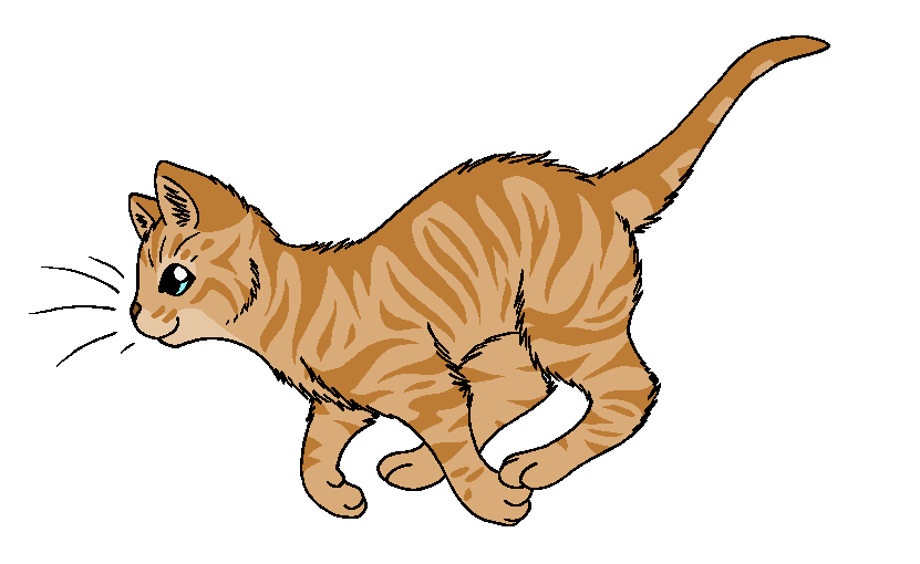 Warrior Cat Heather