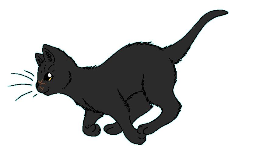 WindClan - Deadfoot by WildpathOfShadowClan on DeviantArt Sad Cat Lineart