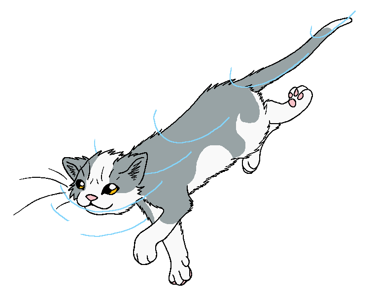Icewing A Warrior Cat