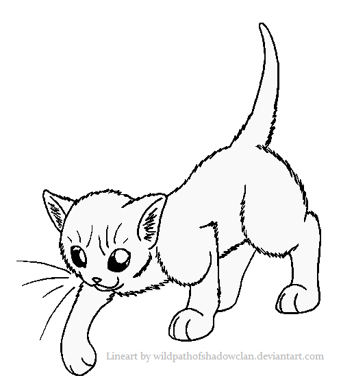 RiverClan Warrior Lineart by WildpathOfShadowClan on
