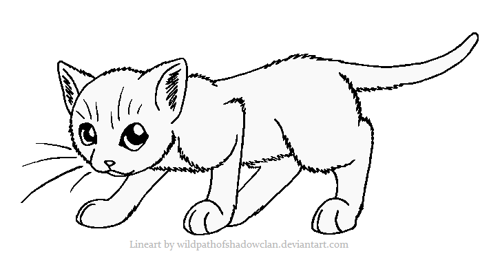 Simple Cat Lineart : Shadowclan warrior lineart by wildpathofshadowclan on