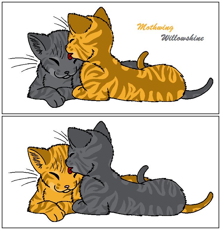 Mothwing and Willowshine by WildpathOfShadowClan on DeviantArt Willowshine Warriors