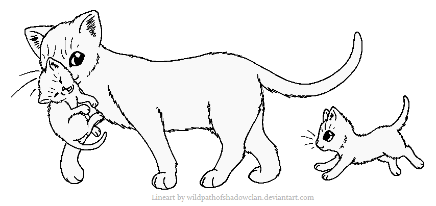 Warrior Cats Mates Coloring Pages Printable Warrior Best