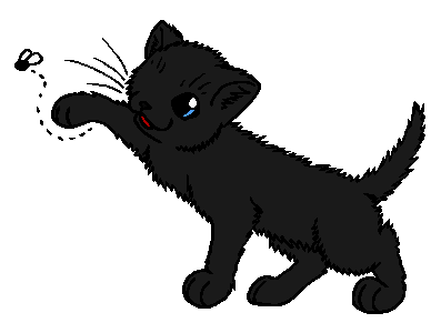 Warrior Cats Beetail