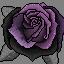 Black Rose by Flammingos