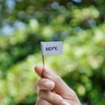 A little hope