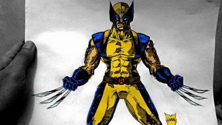 Here's a complete Wolverine design by VVArtist