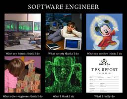 What I Do - Software Engineer by Rydain