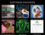 What I Do - Software Engineer