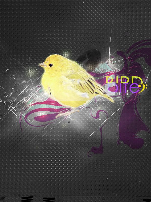 Bird by puppet-soul
