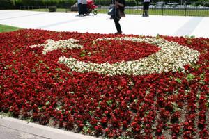 Turkey Flag by Mottcalem