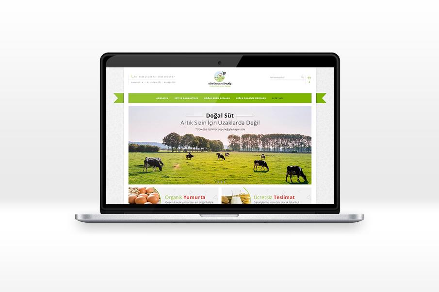 E-Commerce Web Project by Mottcalem