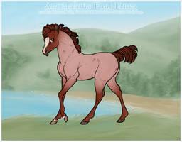 Foal Design   Helahikai