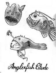 Anglerfish Etude