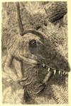 Young Ceratosaurus