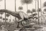 Sinraptor.