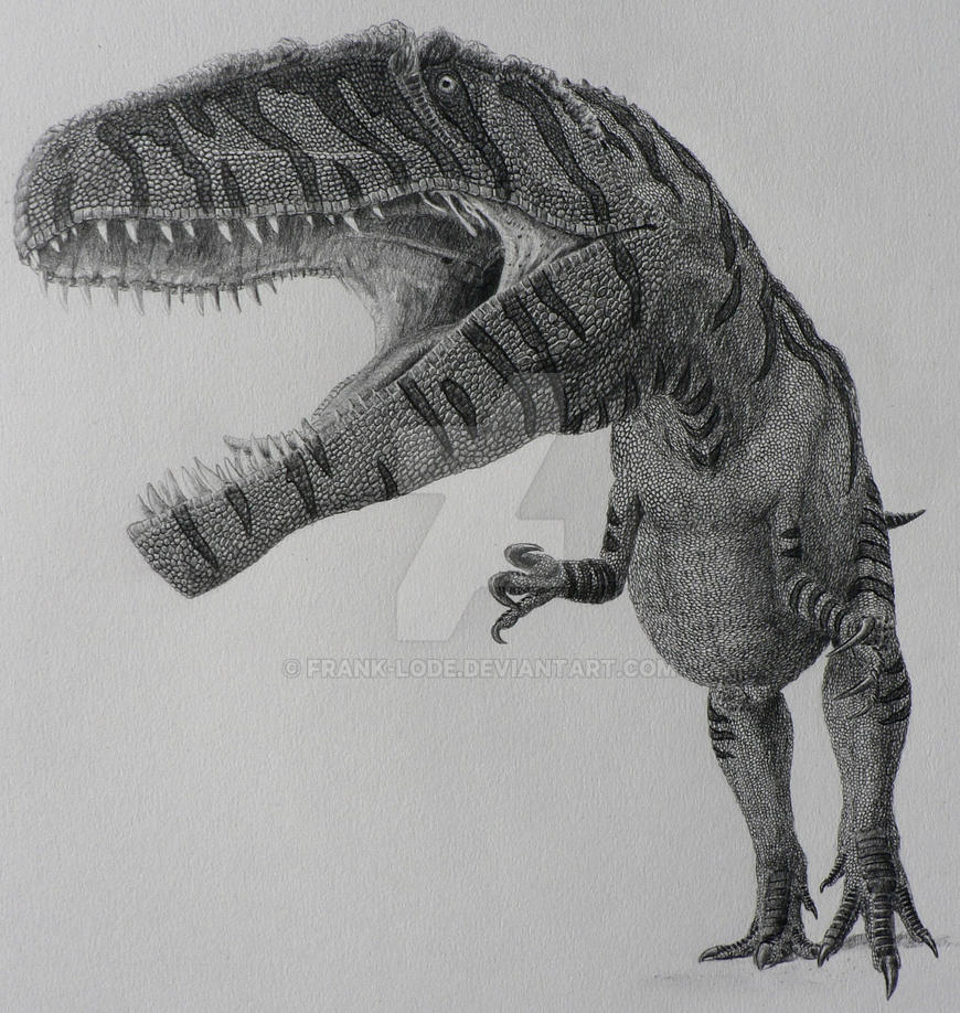 Giganotosaurus Carolinii By Frank-Lode On DeviantArt