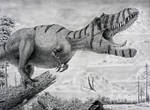 Albertosaurus sarcophagus.