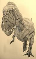 Gorgosaurus.