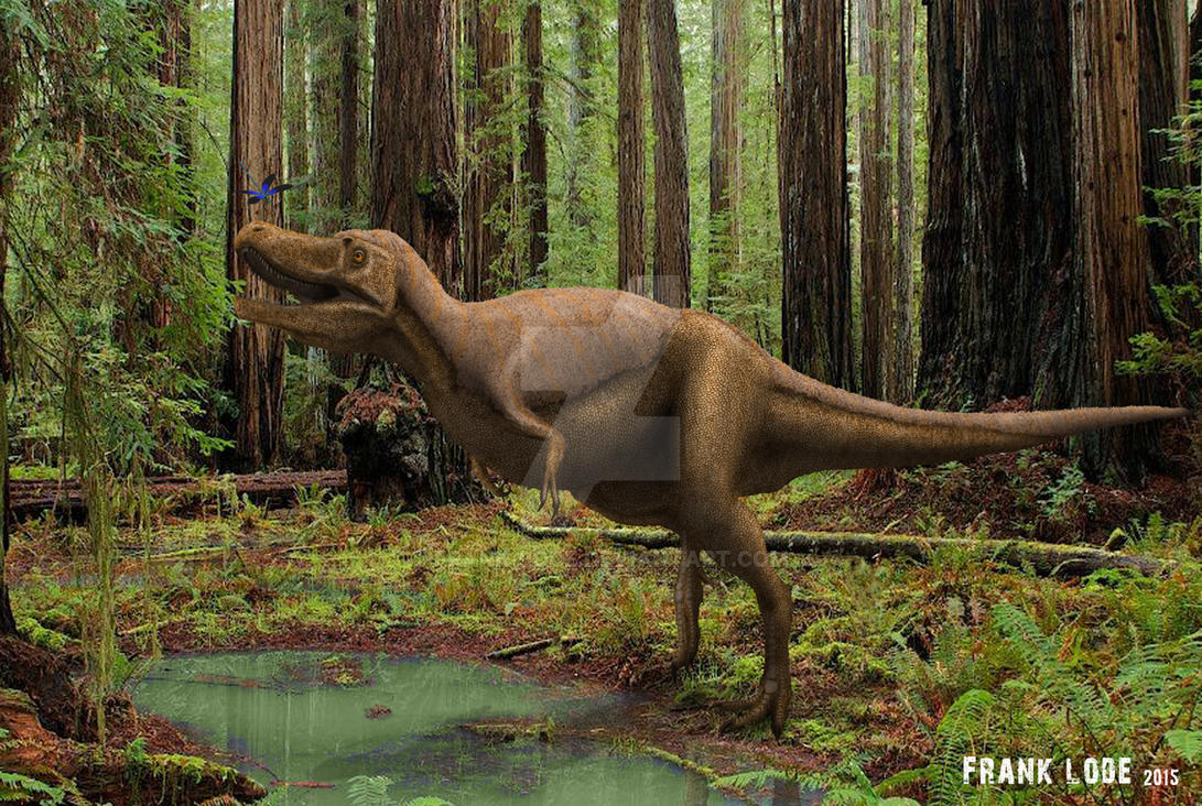 Awesome Paleoart  Nanotyrannus__by_frank_lode-d8jn77w