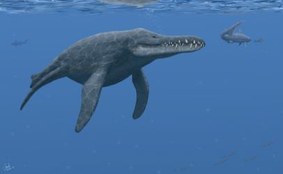 Pliosaurus rossicus.