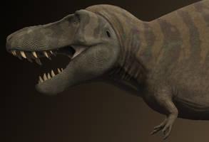 Work in progress. T.rex Stan.